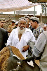 Kashgar livestock market: A mediator setting a fair price for a heifer