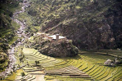 Farm with watchtower in Kohistan